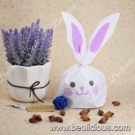 Rabbit Smile